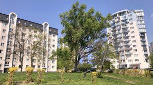 Na prenájom 3 izbový byt, Bratislava, Rača, Krasňany