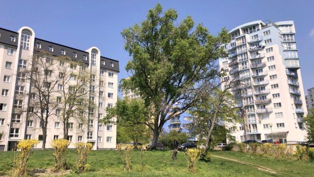 Na prenájom 3 izbový byt, Bratislava, Hečkova ul., Rača, Krasňany